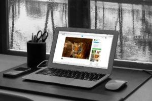 Las 5 Partes de un Blog que Debes Conocer