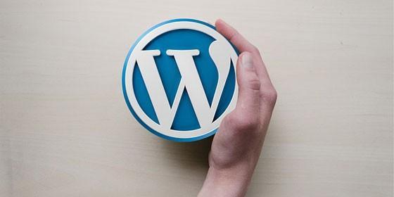 La Herramienta que Utilizan el 25% de Webs del Mundo