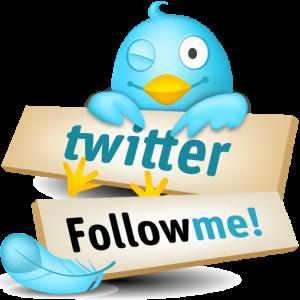 Como Conseguir Seguidores en Twitter