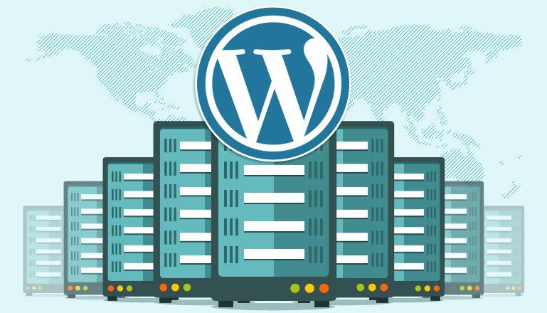 Raiola Networks vs Webempresa vs Hostgator