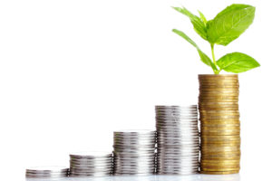 Libertad financiera. Independencia financiera para Principiantes