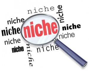 Diferencia entre un blog y una página nicho